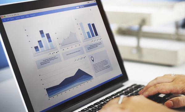 ViaOne Services Company Data